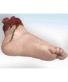 Body Part: Foot