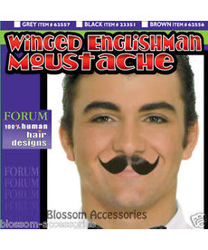 Gray Winged Englishman Moustache