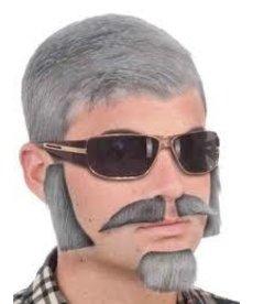 Facial Hair Disguise Kit