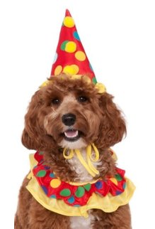 Rubies Costumes Clown Standard Size Pet Costume