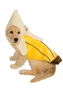 Rubies Costumes Banana Pet Costume