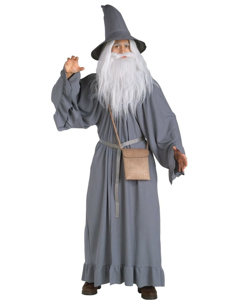 Gandalf Wig and Beard Kit Adult The Hobbit Lord of The Rings Costume Wizard Gray
