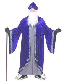 Men's Plus Size Grand Wizard: XXXL (Plus)