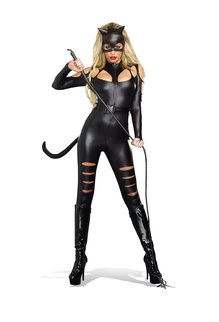 Dream Girl Women's Cat Fight Costume