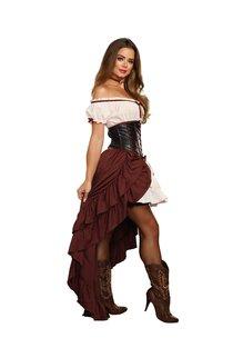 Dream Girl Women's Saloon Gal Costume