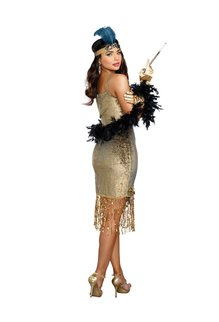 Dream Girl Women's Golden Girl Flapper Dress