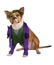 Rubies Costumes Joker: Pet Costume