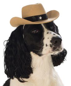 Rubies Costumes Cowboy Pet Hat (Brown): Pet Costume