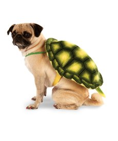 Rubies Costumes Turtle Shell: Pet Costume