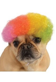 Rubies Costumes Afro Wig (Rainbow): Pet Costume