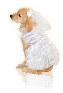 Rubies Costumes Bride: Pet Costume