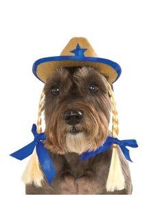 Rubies Costumes Cowgirl Hat w/ Braids: Pet Costume