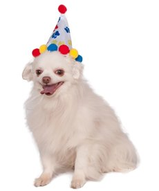 Rubies Costumes Paw Print Birthday Pet Hat (Primary Colors)