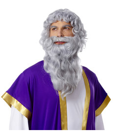 Deluxe Grey Biblical Wig & Beard