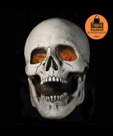 Distortions Unlimited-Super Skull