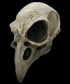 Crow Skull Mask