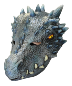 Winter Dragon Mask