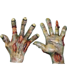 Zombie Hands: Rotted