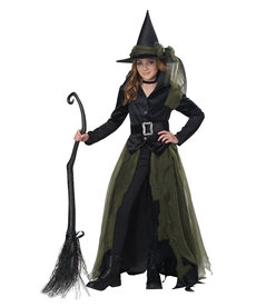 California Costumes Kids Cool Witch Costume