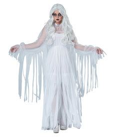 California Costumes Women's Ghostly Spirit Costume