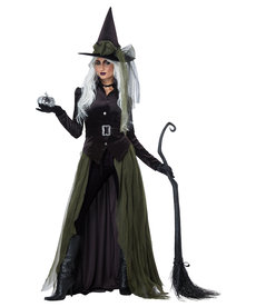 California Costumes Women's Gothic Witch Costume