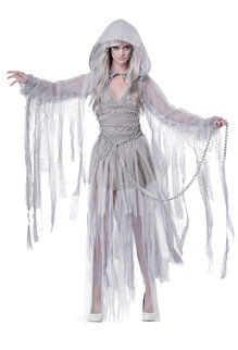 California Costumes Women's Haunting Beauty Costume
