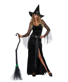 California Costumes Women's Rich Witch Costume