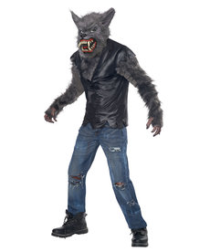 California Costumes Kids Full Moon Fury Costume