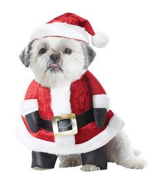 California Costumes Santa Paws: Pet Costume