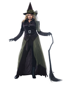 California Costumes Women's Plus Size Gothic Witch Costume