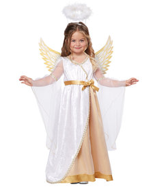 California Costumes Toddler Sweet Little Angel Costume