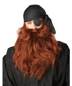 California Costumes Pirate Beard & Moustache