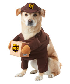California Costumes UPS Pal: Pet Costume