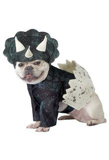 California Costumes Dino Pup: Pet Costume