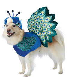 California Costumes Pretty As A Peacock: Pet Costume