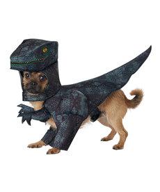 California Costumes Pupasaurus Rex: Pet Costume
