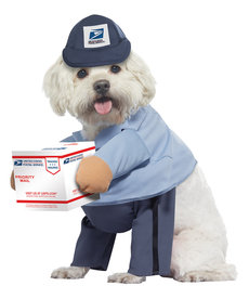 California Costumes U.S. Mail Carrier Pup: Pet Costume