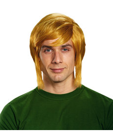 Disguise Costumes Link Wig: Adult