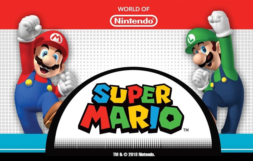 Super Mario Brothers Costumes & Accessories