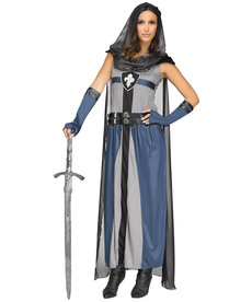 Fun World Costumes Adult Lady Lionheart Knight Costume