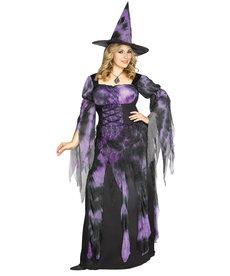 Fun World Costumes Women's Plus Size Starlight Witch Costume