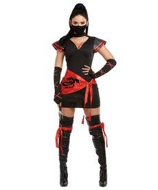 Dream Girl Women's Ninja Costume