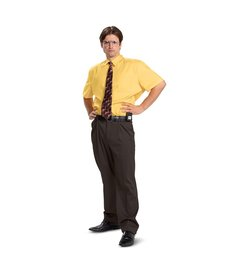 Disguise Costumes Men's Dwight Schrute Costume (The Office)