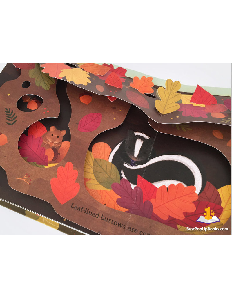 Leaves: An Autumn Pop-Up Book