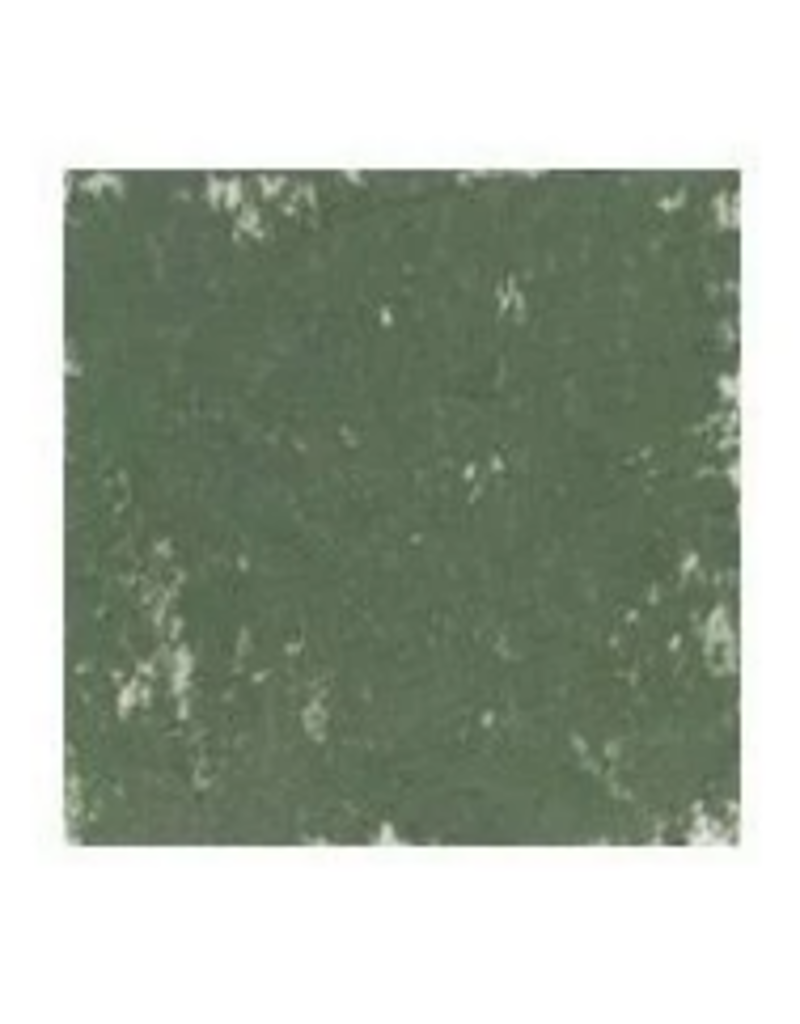 Holbein Acad Oil Pstl 10Sk Gr Grn
