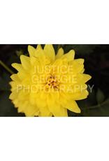 "Justice Georgie Photography ""Warm Embrace"" Print"