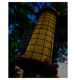 "Justice Georgie Photography ""Golden Lantern"" Print"