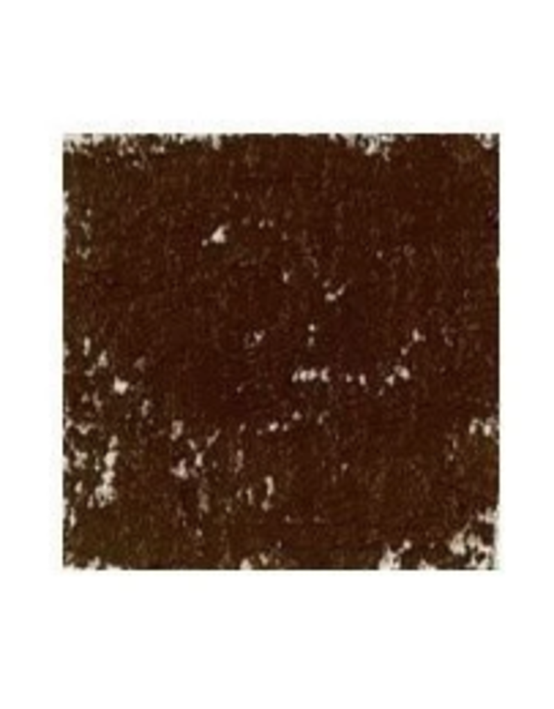 Holbein Acad Oil Pstl 10Sk Dk Brn