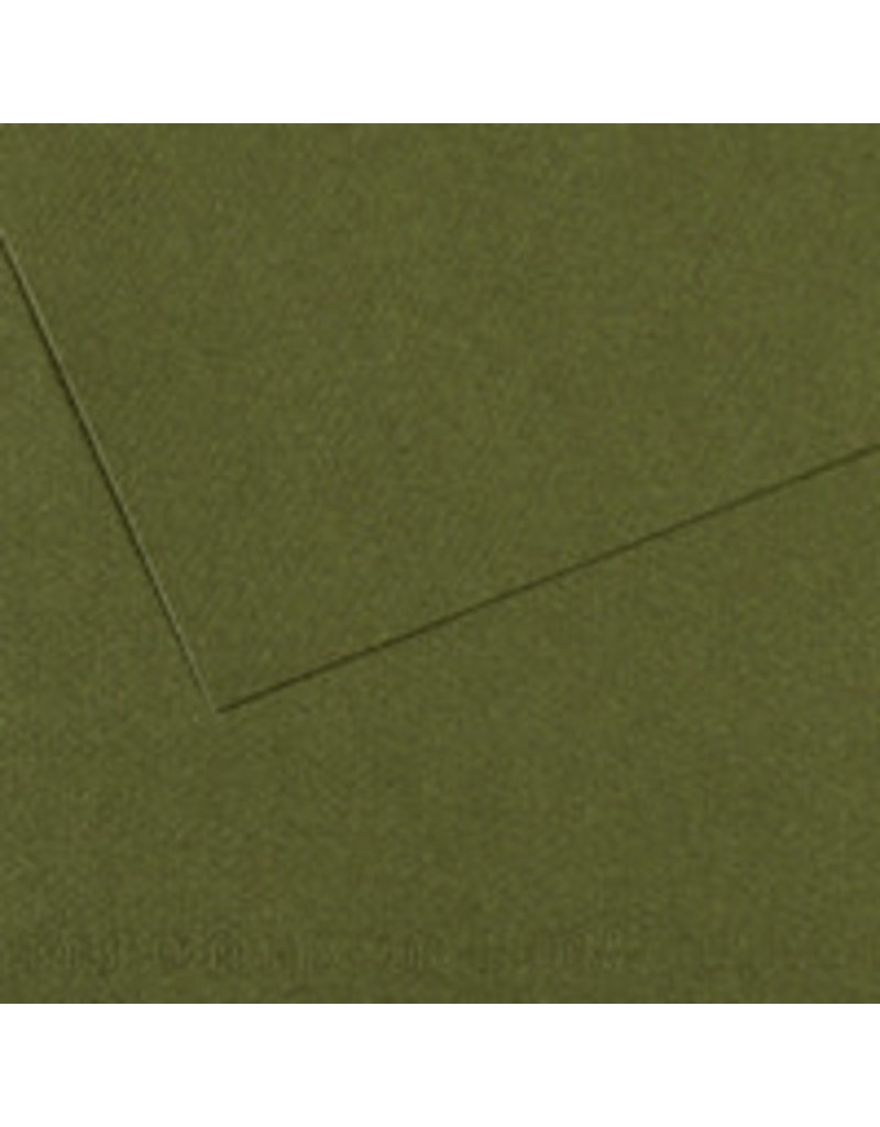 Canson Mi-Teintes Paper Sheets, 8-1/2'' x 11'', Ivy