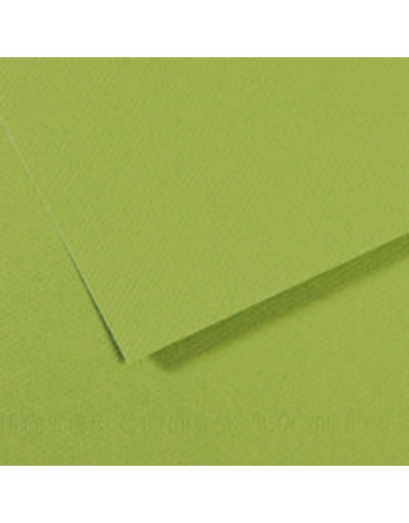 """Canson Mi-Teintes Paper Sheets, 19"""" x 25"""", Green"""